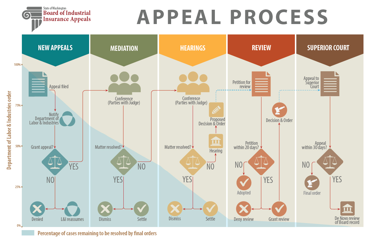 steps of the appeal process